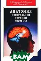Анатомия центральной нервной системы  Н. В. Воронова, Н. М. Климова, А. М. Менджерицкий купить