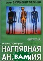 Наглядная анатомия  Фейц О., Моффет Д. купить