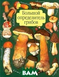Большой определитель грибов  Юдин А.В. купить