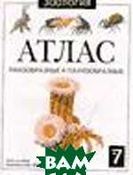 Ракообразные и паукообразные. Атлас №7 Серия: Зоология  Козлов М.А. купить