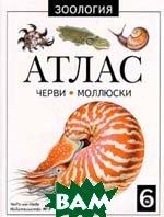 Черви и моллюски. Атлас. № 6  Серия: Зоология  М. А. Козлов купить