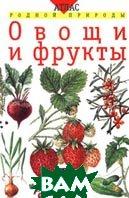 Овощи и фрукты Серия: Атлас родной природы;   Т. А. Козлова, В. И. Сивоглазов  купить