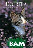 Котята. Серия: Мир животных  Шнек Маркус купить