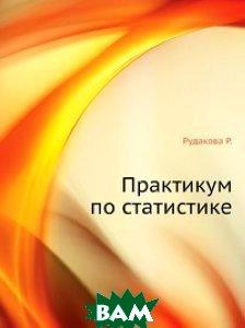 Практикум по статистике   Р.  Рудакова, Л.  Букин, В.  Гаврилов купить