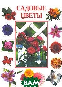 Садовые цветы   купить