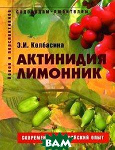 Актинидия, лимонник  Э.И. Колбаскина купить