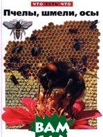 Пчелы, шмели, осы. Серия `Что есть что`  Ольга Короткова  купить