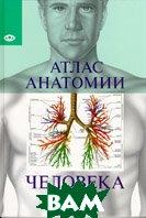 Атлас анатомии Человека   купить