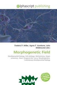Morphogenetic Field