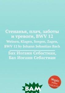 Стенанья, плач, заботы и тревоги, BWV 12