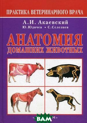 Анатомия домашних животнных  Акаевский А.И. купить