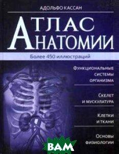 Атлас анатомии. Более 450 иллюстраций