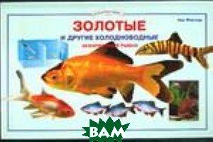 Золотые и другие холодноводные аквариумные рыбки  Флетчер П. купить