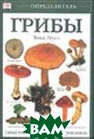 Грибы  Лессо Т. купить