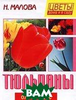 Тюльпаны Серия: Цветы дома и в саду  Малова Н. купить