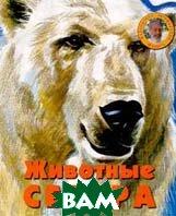 Животные Севера Серия: Библиотека профессора Флинта  В. Флинт купить