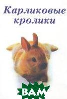 Карликовые кролики  Альтман Д. купить