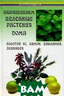 Выращиваем целебные растения дома: Золотой ус, лимон, цикламен, эхинацея  Казьмин купить