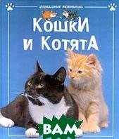Кошки и котята  Кэтрин Старк  купить