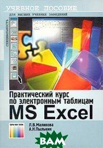 Практический курс по электронным таблицам MS Excel. 2 изд.  Л. В. Маликова, А. Н. Пылькин купить