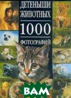 Детеныши животных. 1000 фотографий  Милларка С. купить