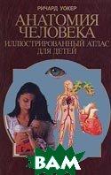 Анатомия человека. Иллюстрированный атлас для детей  Уокер Р. купить