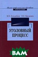 Уголовный процесс. 2-е издание  М. Х. Гельдибаев, В. В. Вандышев купить