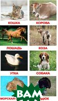 Комплект карточек `Вундеркинд с пелёнок. Домашние животные`   купить