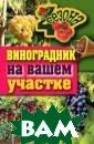 Виноградник на  вашем участке Ж ивотовская Е.В.   256 с. Как пр авильно выбрать  сорт винограда , где его сажат ь, как подготов ить почву, как  поливать и ухаж