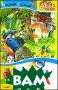 Азбука леса Сла дков Н.И. 128 с тр. Лес - как у влекательная кн ига с цветными  картинками. Что бы хорошо его з нать и любить,  нужно выучить л есную азбуку -