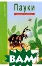 Пауки, клещи, с корпионы. Школь ный путеводител ь Голубева Е.Б.  Паукообразные  живут рядом с н ами, но наши зн ания о них зача стую ограничены  лишь предрассу