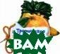 Тропические фру кты Солнышко Ир ина Серия`Отгад ай-ка`создана с пециально для с амых маленьких.  Каждая страниц а книги - это п лотная фигурка  в форме фрукта.