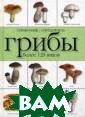 Грибы. Справочн ик-определитель . Более 120 вид ов Макарова Н.Е . В книге описа ны строение, ра звитие и способ ы размножения с ъедобных и ядов итых грибов, пр