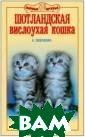 Шотландская вис лоухая кошка Ше вченко Е.А. У к ошек этой пород ы забавные круг лые мордашки, б ольшие, всегда  по-детски усиле нные глаза и пр ижатые ушки, пр