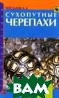 Сухопутные чере пахи Чегодаев А .Е. Черепахи бы ли и остаются н аиболее популяр ными рептилиями  по содержанию  в неволе. Вы уз наете как надо  правильно ухажи