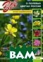 Все о полевых ц ветах России Ша ронов А. Книга  является иллюст рированным опре делителем более  400 видов дико растущих травян истых растений.  Первичный поис