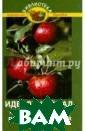 Идеальный сад,  или Как вырасти ть рекордный ур ожай Бурова Вал ентина Васильев на Большинство  садоводов-любит елей со стажем  находятся в дли тельном плену с