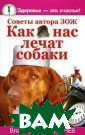 Как нас лечат с обаки Владимир  Агафонычев Если  собака норовит  вас облизать,  или укладываетс я рядышком, или  ложится к вам  на ноги, просто  от вас не отхо