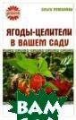 Ягоды-целители  в вашем саду Ол ьга Романова Уд ачно сочетая в  себе высокие вк усовые и целебн ые свойства, са довые ягоды явл яются не только  прекрасным лет