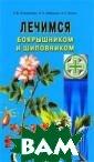 Лечимся боярышн иком и шиповник ом Л. В. Никола йчук, Н. П. Зуб ицкая, Е. С. Ко зюк Природа дал а человеку удив ительные растен ия, обладающие  высокой биологи