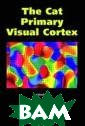 The Cat Primary  Visual Cortex  Bertram Payne T he Cat Primary  Visual Cortex I SBN:97801255210 48
