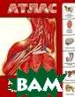 Атлас анатомии  человека С. С.  Левкин В данном  атласе предста влены сведения,  касающиеся стр оения и функций  органов и ткан ей человека. Ма териал изложен