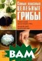 Самые полезные  целебные грибы.  Тибетский моло чный гриб. Инди йский морской г риб. Чайный гри б. Березовый гр иб чага Е. Н. Ш китина, А. С. Г аврилова, Г. А.