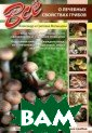 Все о лечебных  свойствах грибо в Александр и С ветлана Матанце вы В книге дает ся характеристи ка пищевой ценн ости всех грибо в и лечебные св ойства основных