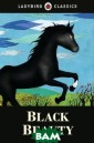 Black Beauty An