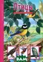 Птицы А. Г. Буг аев Из всех нас еляющих Землю ж ивых существ са мыми удивительн ыми являются пт ицы. Они освоил и самый большой  из океанов - в оздушный и с др