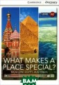 What Makes a Pl