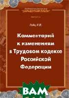 Комментарий к изменениям в Трудовом Кодексе Российской Федерации  Гейц И.В. купить