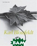 Karl Blossfeldt, 1865-1932  Hans Christian Adam купить