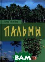 Пальмы: для комнаты и зимнего сада  Кемпфер Д. купить